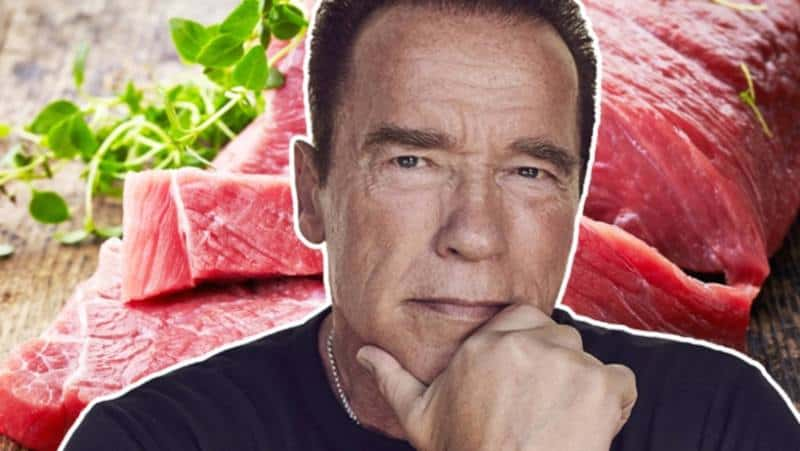 New Study Reveals The Bizarre Food Arnold Schwarzenegger Eats to Last 447% Longer In Bed [Details Inside]